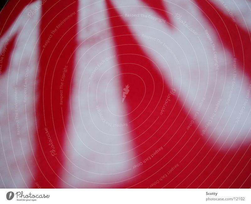 Red Boxer weiß rot Freizeit & Hobby Schriftzeichen