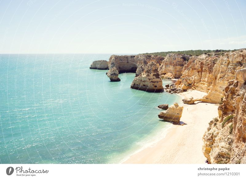 Typisch Algarve Ferien & Urlaub & Reisen Sommer Meer Strand Küste hell Felsen Wellen Schönes Wetter Bucht Wolkenloser Himmel Sonnenbad heiß Portugal Atlantik