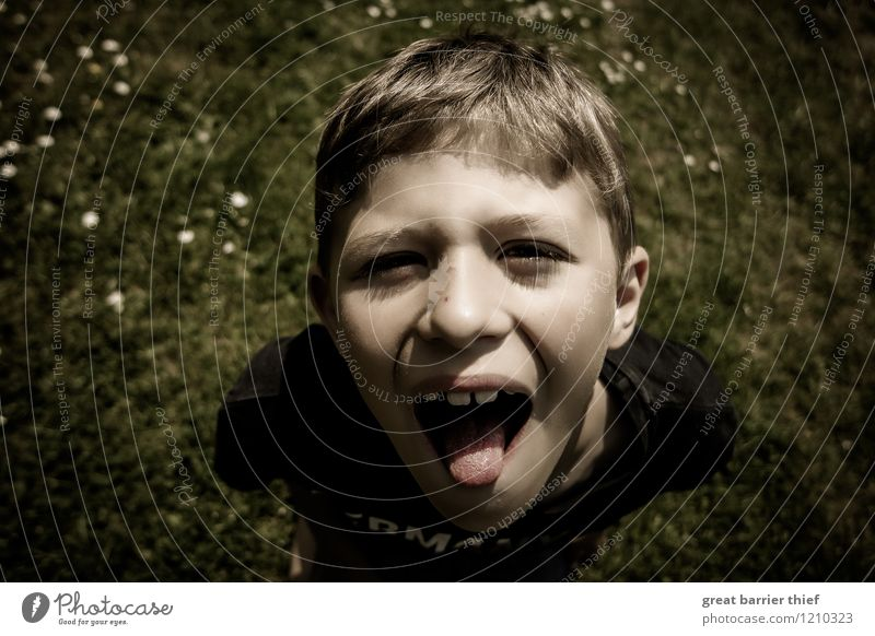 Schuljunge im Garten Mensch Kind grün weiß Gesicht gelb Junge Gesundheit Glück Haare & Frisuren braun Kopf maskulin Körper Kindheit Fröhlichkeit