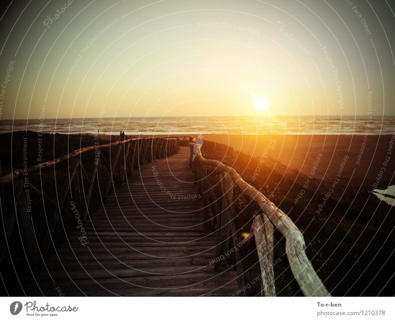 Sonne & Holzweg Landschaft Horizont Sonnenaufgang Sonnenuntergang Sommer Schönes Wetter Wellen Strand Erholung Schwimmen & Baden wandern maritim schön Wärme