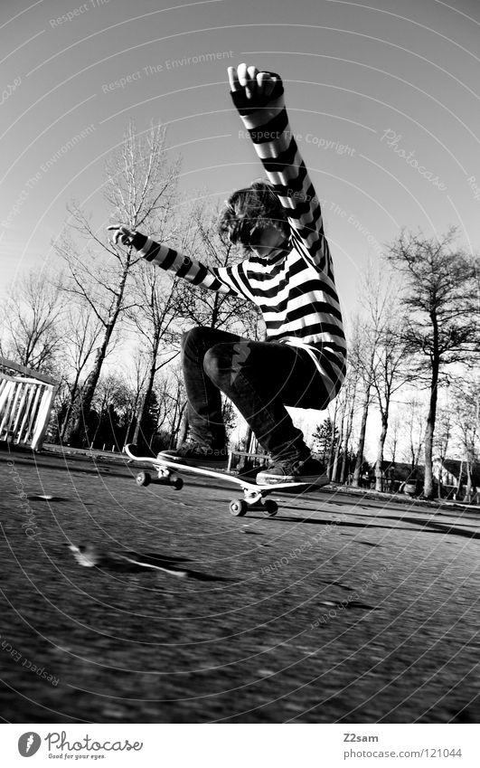 LANDING Abenddämmerung Aktion Skateboarding Zufriedenheit springen gestreift Teer Beton Licht Baum Weitwinkel Jugendliche Sport Knie drücken Funsport Bewegung