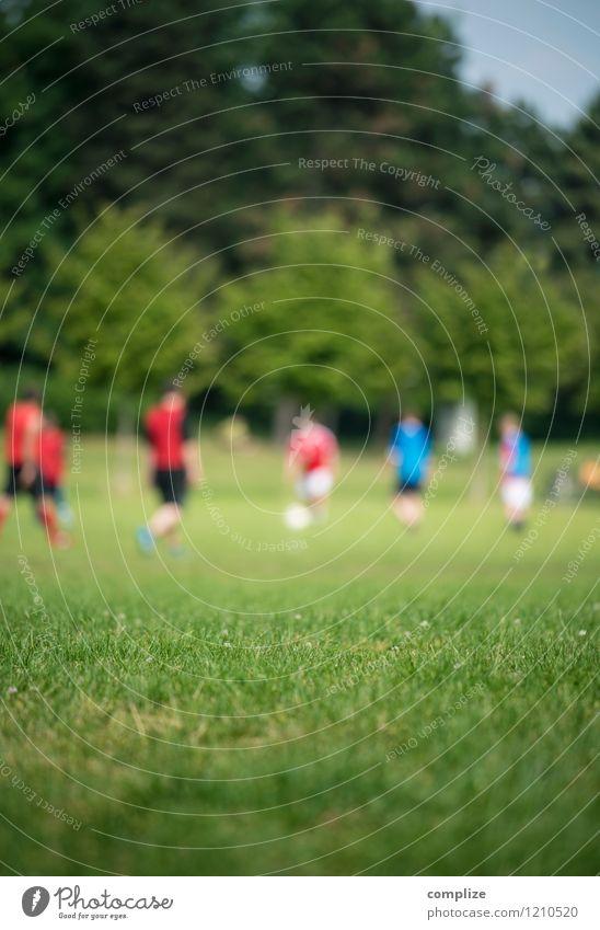 Russland vs. Katar Freude Gesundheit sportlich Fitness Freizeit & Hobby Spielen Sonne Sport Ballsport Sportler Sportmannschaft Torwart Sportveranstaltung Erfolg