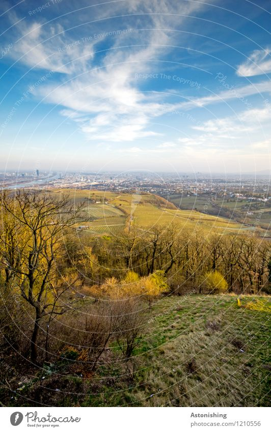 Blick auf Wien 2 Umwelt Natur Landschaft Pflanze Luft Himmel Wolken Horizont Frühling Wetter Schönes Wetter Baum Gras Sträucher Wiese Wald Hügel Österreich