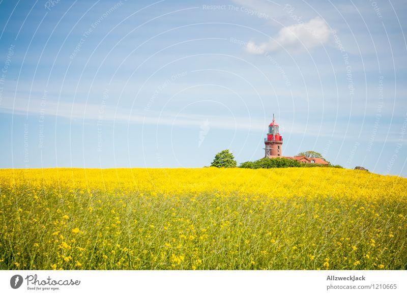 Textfreiraum links – Ostsee Edition alt Pflanze Feld verrückt historisch Kitsch Dorf Leuchtturm