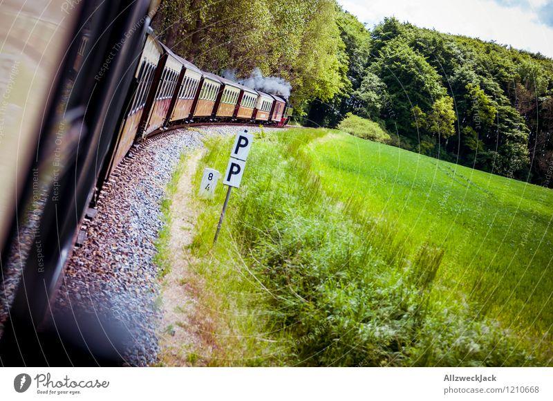 Landpartie Frühling Sommer Wald Personenverkehr Schienenverkehr Bahnfahren Eisenbahn Dampflokomotive Personenzug Erholung Ferien & Urlaub & Reisen grün rot