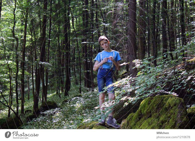Ich glaub´ ich steh im Wald Kind Natur Sommer Baum ruhig Ferne Berge u. Gebirge Junge Zeit Freiheit Felsen maskulin Zufriedenheit wandern Kindheit