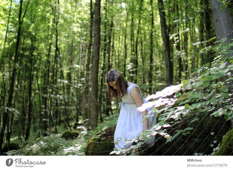 Da schau her Ausflug Abenteuer feminin Kind Mädchen 8-13 Jahre Kindheit Natur Baum Wald Felsen Kleid beobachten stehen grün weiß Gelassenheit ruhig träumen