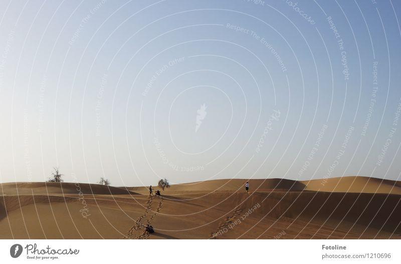 Spuren im Sand Mensch Natur Pflanze Sommer Baum Landschaft Ferne Umwelt Wärme hell Urelemente Wüste heiß Naher und Mittlerer Osten