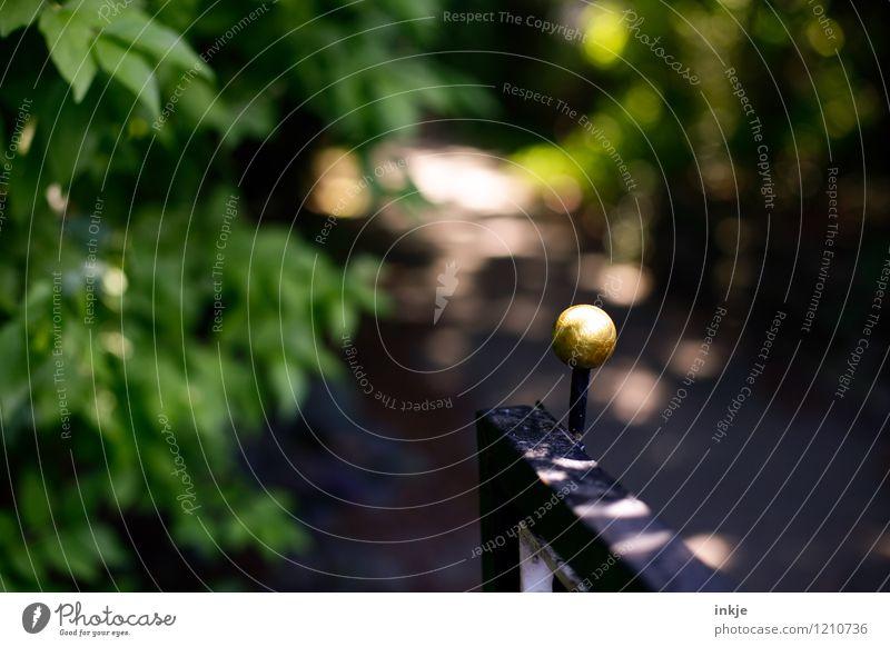 Der geheime Garten Lifestyle Natur Sonne Sommer Schönes Wetter Sträucher Menschenleer Tür Tor Gartentor Griff Wege & Pfade Gartenweg Unschärfe Gold Kugel