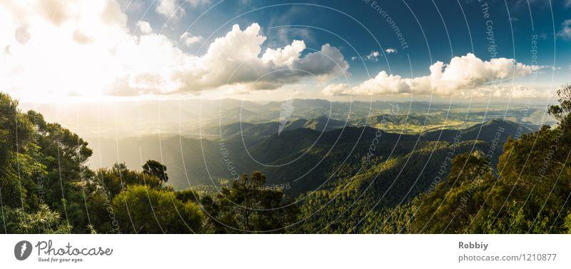 Gondwana Regenwald Natur Ferien & Urlaub & Reisen Pflanze Sonne Landschaft ruhig Wolken Ferne Wald Umwelt Berge u. Gebirge Freiheit Horizont Tourismus Idylle