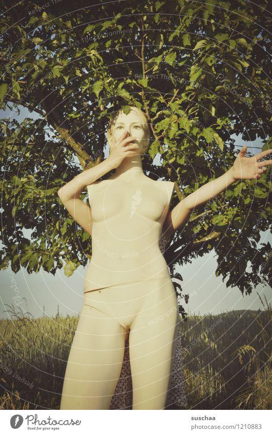 die puppe ...... Außenaufnahme Sommer Natur Baum Blatt Gras Schaufensterpuppe Beine nackt Arme Hand Kopf verrückt Kind Kindheit Spielen lustig verstecken