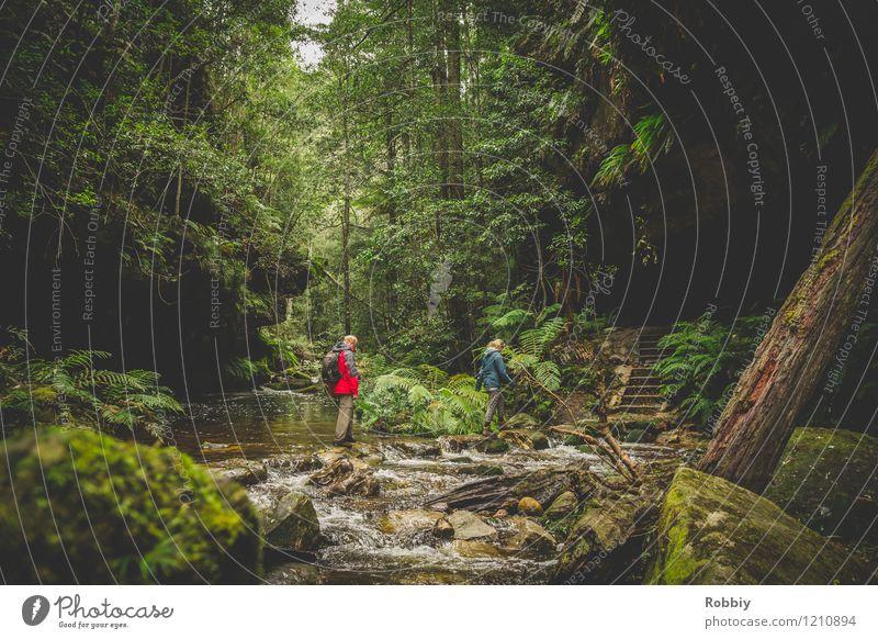 ...über Stock und Stein... Ferien & Urlaub & Reisen Tourismus Ausflug Abenteuer Expedition Berge u. Gebirge wandern Schlucht 2 Mensch Natur Landschaft Urwald