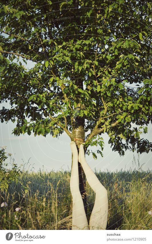 beine Natur Außenaufnahme Baum Sommer Beine Fuß Schaufensterpuppe falsch