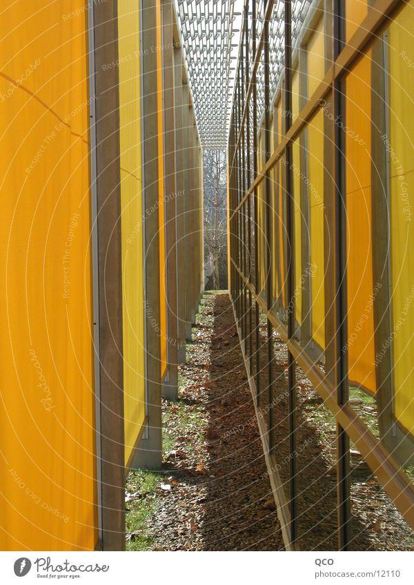 Gelb umgeben gelb Architektur Wetterschutz Jalousie Sporthalle Träger