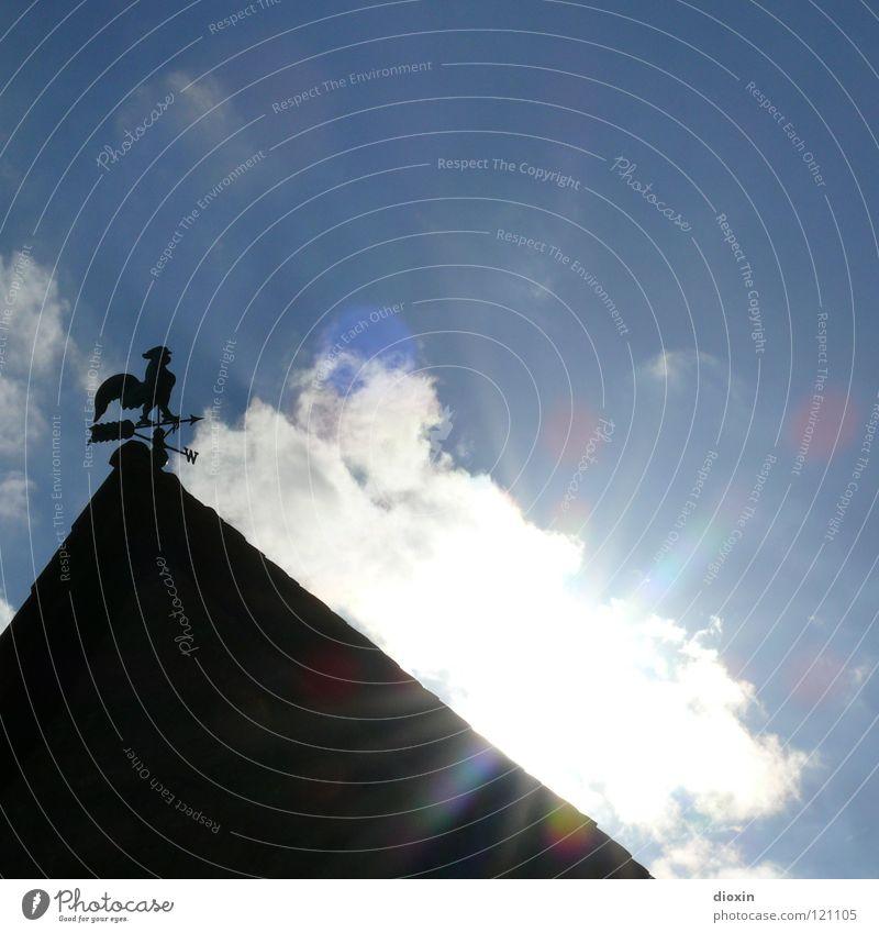 Light The Sun Licht Gegenlicht Wolken schwarz weiß Sonnenstrahlen Hahn Wetterhahn Himmelsrichtung Dach Sommer Fröhlichkeit positiv Guten Morgen Physik