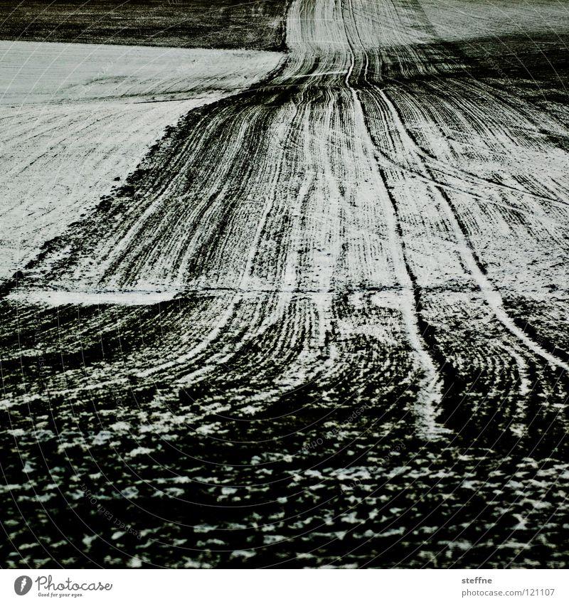 Klimawandel III Winter Feld Landwirtschaft Pflug Schneeflocke weiß Temeraturanstieg Wetterkapriolen Wann wirds mal wieder richtig Winter Amerika Linie