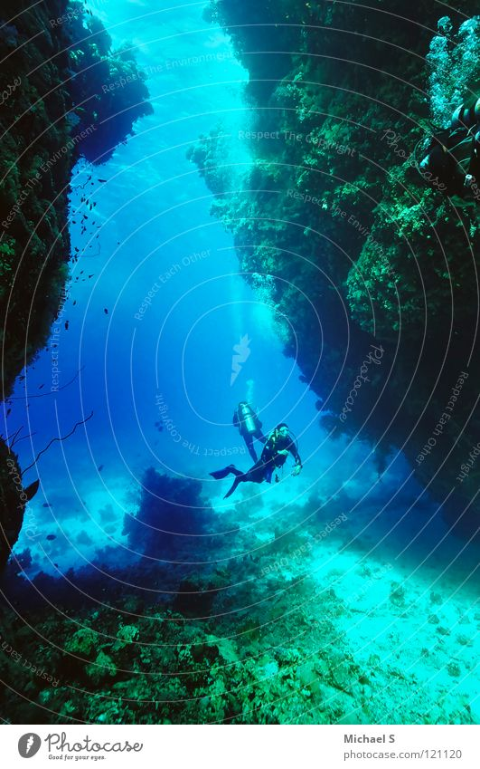 Tauchen tauchen Meeresforschung Ägypten Unterwasseraufnahme Ferien & Urlaub & Reisen Wassersport Unterwasserlandschaft Höhlentauchen Rotes Meer St. John´s Riffe
