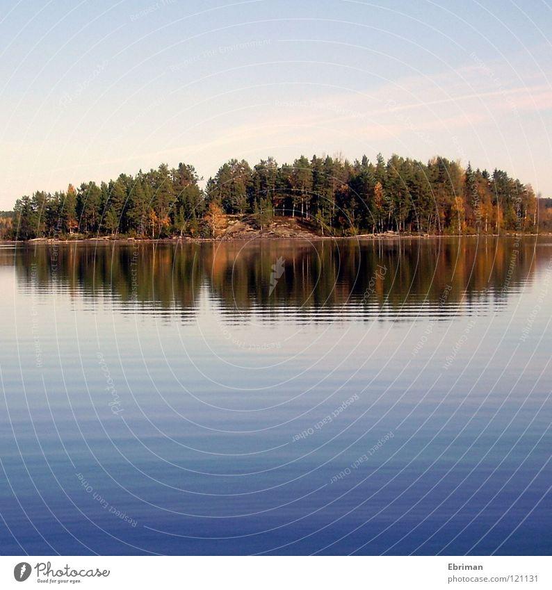 Biber-Insel See Wellen Sonne Baum Blatt Klippe Reflexion & Spiegelung Herbst grün tief Küste Frieden Armsjön Wasser norrland Schweden blau Himmel Stein ruhig