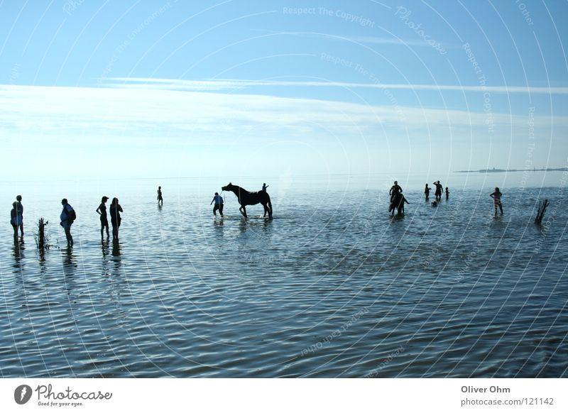 Watt Impression Wattenmeer Cuxhaven Pferd Silhouette wandern Küste Strand Nordsee Mensch