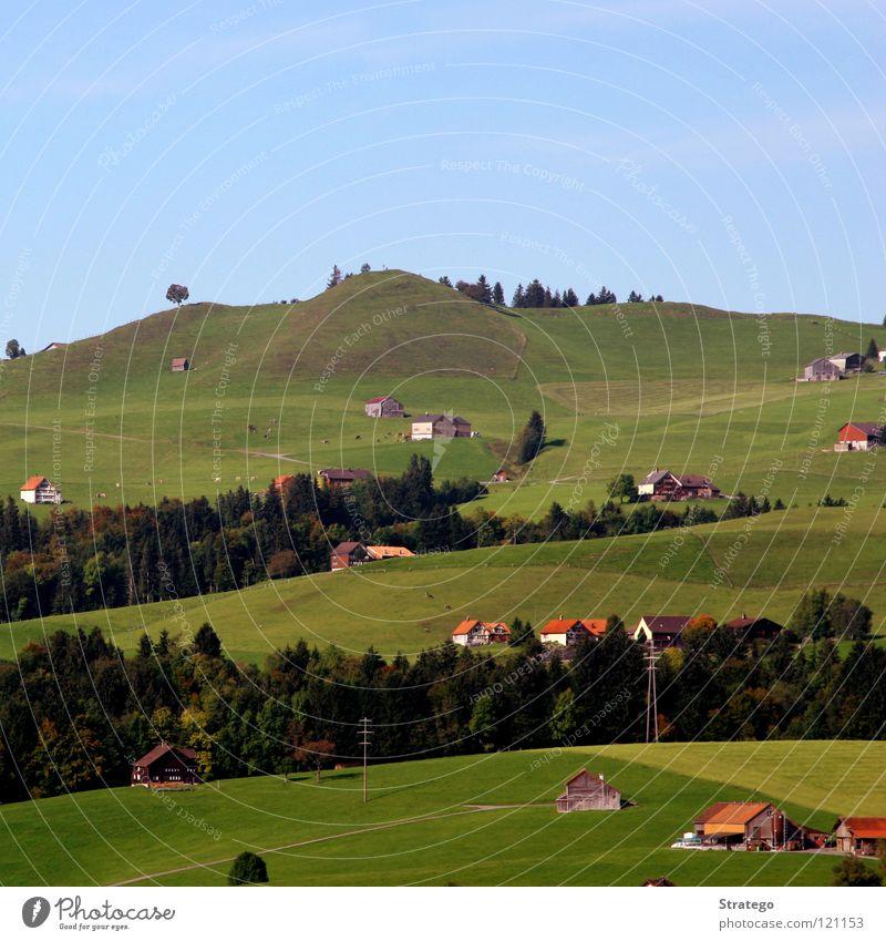 quadratische Idylle Baum Sommer Ferien & Urlaub & Reisen Haus Wald Wiese Gras Freiheit Landschaft wandern Tourismus Spaziergang Frieden Schweiz Häusliches Leben