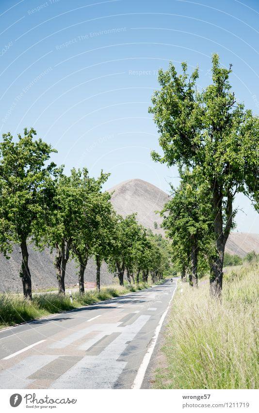 Land der Pyramiden I Himmel blau Pflanze grün Sommer Baum Landschaft Straße grau braun Deutschland Horizont hoch Europa Schönes Wetter Industrie