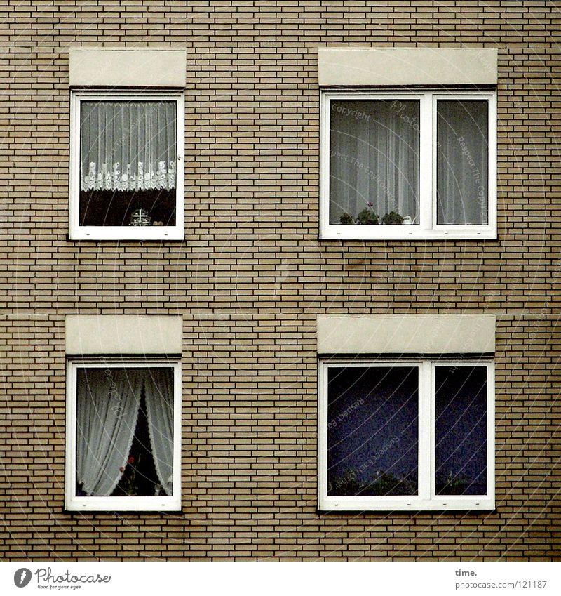 Final Curtains alt Haus Fenster Mauer Wohnung Hochhaus Ecke trist Häusliches Leben 4 Quadrat niedlich Wohnzimmer Stillleben Vorhang