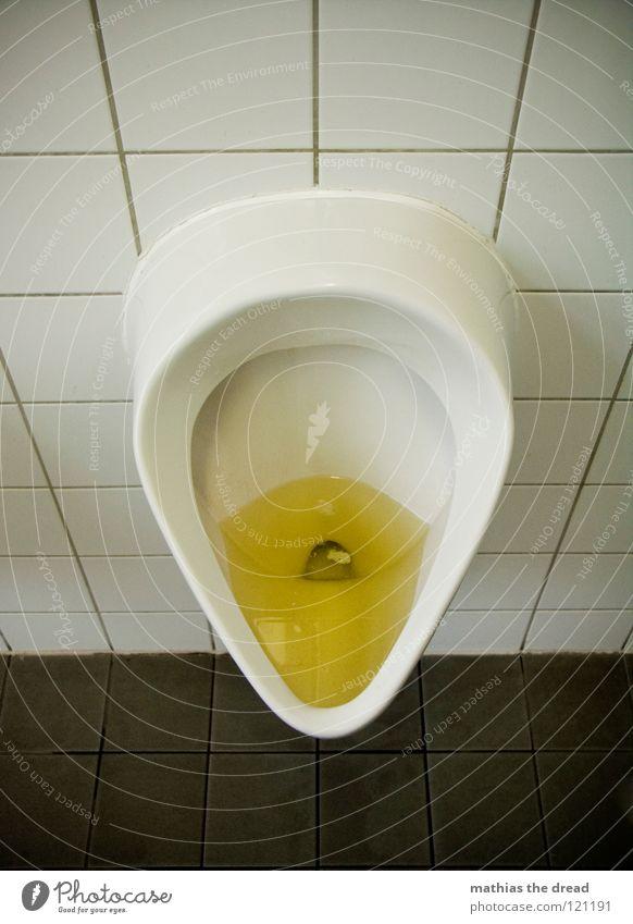 VERSTOPFT Mann weiß gelb hell dreckig Bad rund offen Sauberkeit Vertrauen Toilette Fliesen u. Kacheln Flüssigkeit Alkoholisiert Ekel Schifffahrt