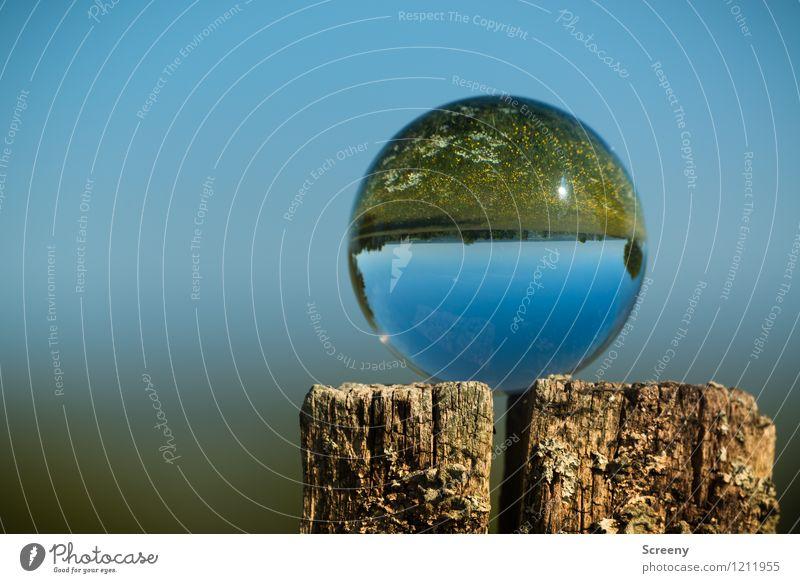 Welten #5 Natur Landschaft Pflanze Himmel Wolkenloser Himmel Sonne Sonnenlicht Frühling Sommer Wiese Eifel Glaskugel Kristallkugel Holz rund blau braun grün