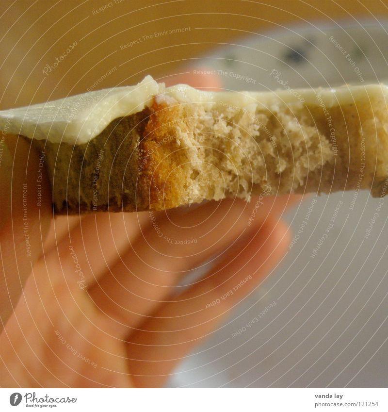Käsebrot Hand Essen Lebensmittel Ernährung Tisch Küche festhalten Appetit & Hunger Frühstück Brot Teller Abendessen Mahlzeit beißen Vegetarische Ernährung