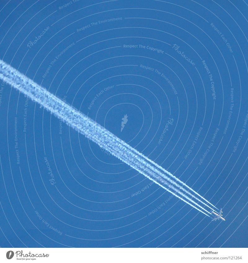 Ab nach Australien! Himmel blau Ferien & Urlaub & Reisen Ferne Flugzeug fliegen Luftverkehr Güterverkehr & Logistik Tourismus Niveau diagonal Fernweh himmelblau