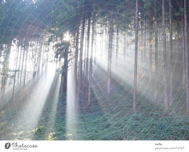 Lichtspiel Balkon Morgen Berge u. Gebirge Vom aus eines fotografiert.....