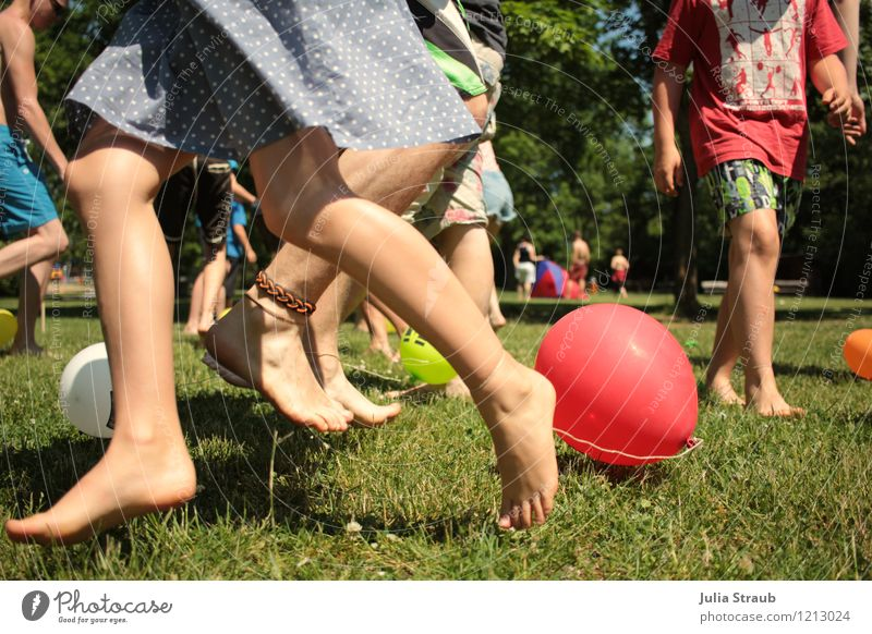 fang den luftballon Mensch Kind Jugendliche blau Baum rot Freude Leben Bewegung Wiese Gras Beine braun Menschengruppe Fuß Freizeit & Hobby