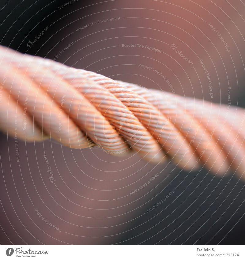 Spreedorado | Das hält Fabrik Stahlkabel Stahlträger Seil Tau Rost Linie alt ästhetisch dick einfach fest retro braun rot Stress festhalten tragen gespannt