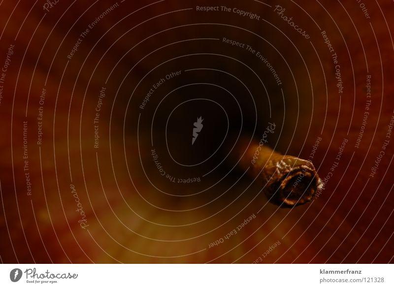 Schwarzes Loch schwarz Wissenschaften Stengel Weltall UFO saugen Anziehungskraft aufsaugen Schwarze Löcher