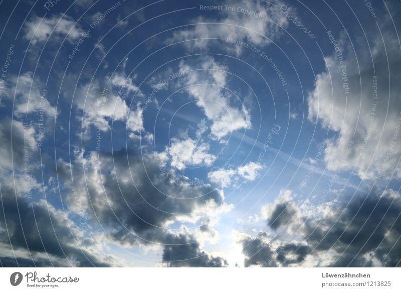 Himmelweit Wolken Schönes Wetter frei blau grau weiß Fröhlichkeit Sehnsucht Freiheit Leichtigkeit Neugier Ferne Außenaufnahme Abend Licht Weitwinkel