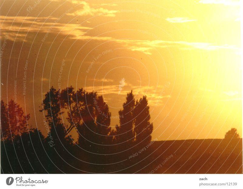 Sonnenbrand Natur schön Himmel Baum rot Ferien & Urlaub & Reisen Wolken gelb Gefühle Landschaft orange Feld Romantik Kitsch Verliebtheit