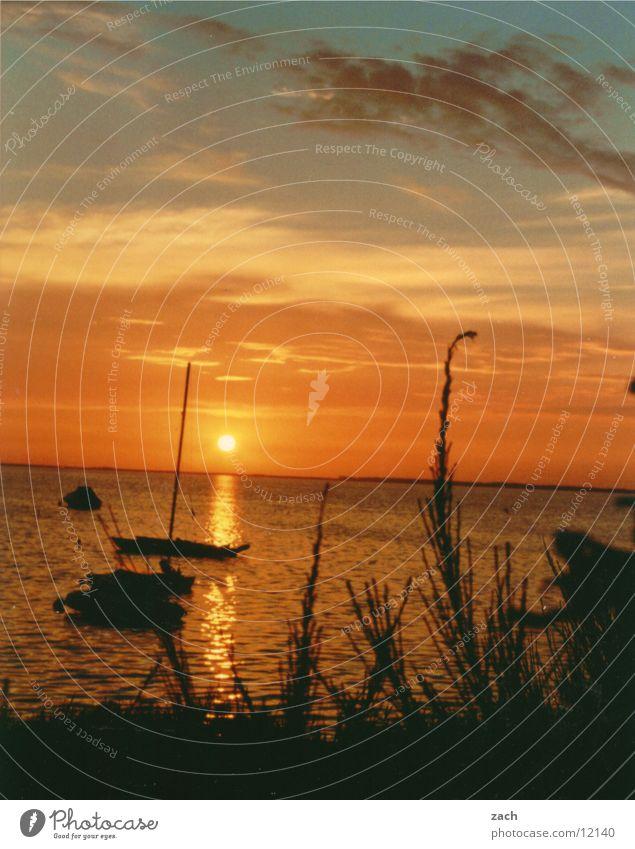 Sonnenuntergang Wasser schön Meer blau rot Sommer ruhig Wolken gelb Ferne Farbe Erholung Gefühle See orange