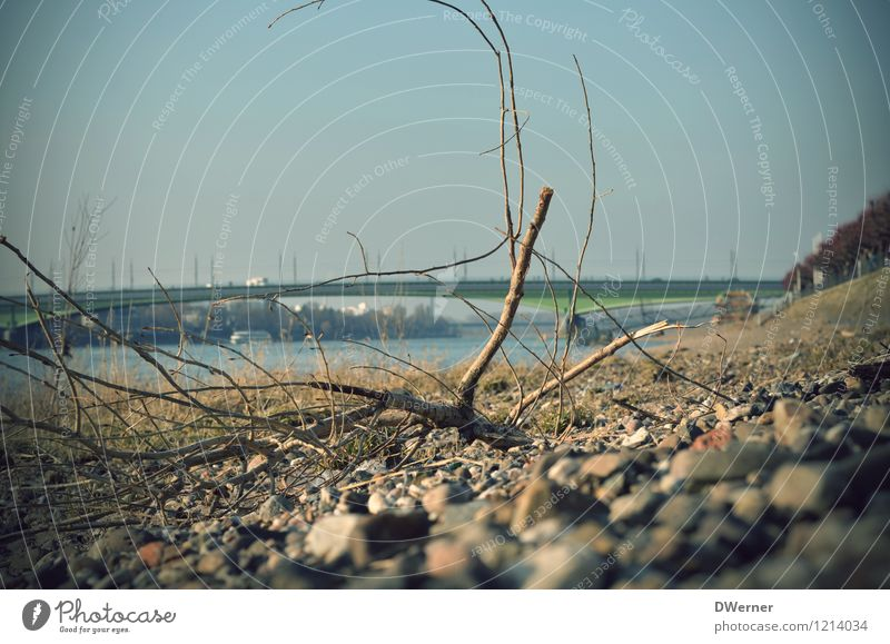 Bonn am Rhein Himmel Stadt blau Wasser Landschaft Strand Umwelt Gefühle Küste Freiheit Stein braun Freizeit & Hobby Ausflug Ast Schönes Wetter