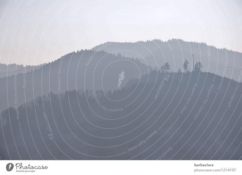 !Trash! 2017 | graublauer Schwarzwald wandern Natur Landschaft Urelemente Himmel Baum Wald Hügel Berge u. Gebirge Stimmung Freiheit Freizeit & Hobby Horizont
