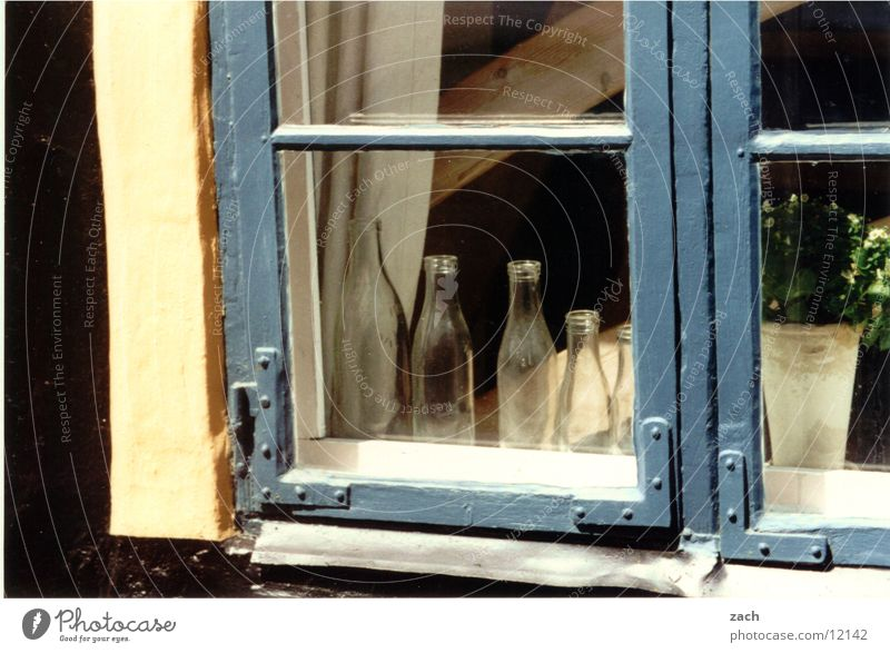 Fenster in Dänemark Blume blau Haus Fenster Glas Fassade Europa Ordnung Aussicht Dekoration & Verzierung Häusliches Leben Warmherzigkeit Flasche Fensterscheibe Geborgenheit Rahmen