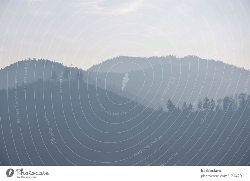 Schwarzwaldpastell Himmel Natur blau Baum Landschaft ruhig Freude Ferne Wald Umwelt Berge u. Gebirge Freiheit Stimmung hell Horizont Hügel