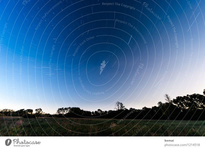 Spreedorado | Sternenklar Himmel Natur blau Pflanze schön Sommer Baum Landschaft ruhig Ferne Umwelt Bewegung Wiese außergewöhnlich groß