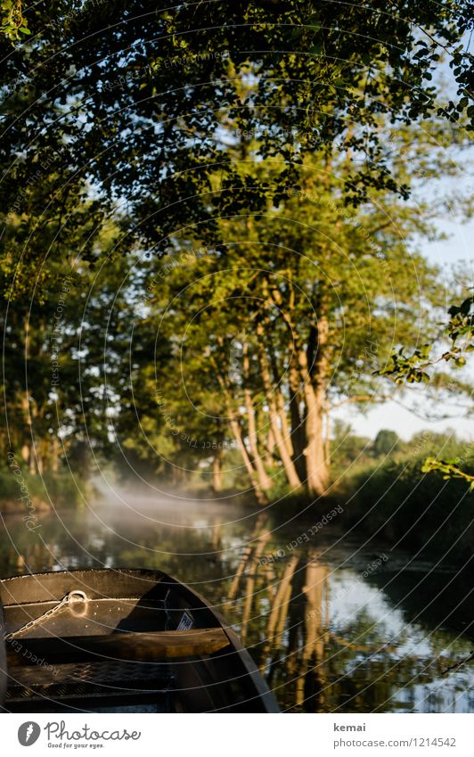 Spreedorado | Kahnfahrt Ferien & Urlaub & Reisen Tourismus Ausflug Abenteuer Spreewald Morgennebel Nebel Nebelschleier Umwelt Natur Landschaft Pflanze Wasser