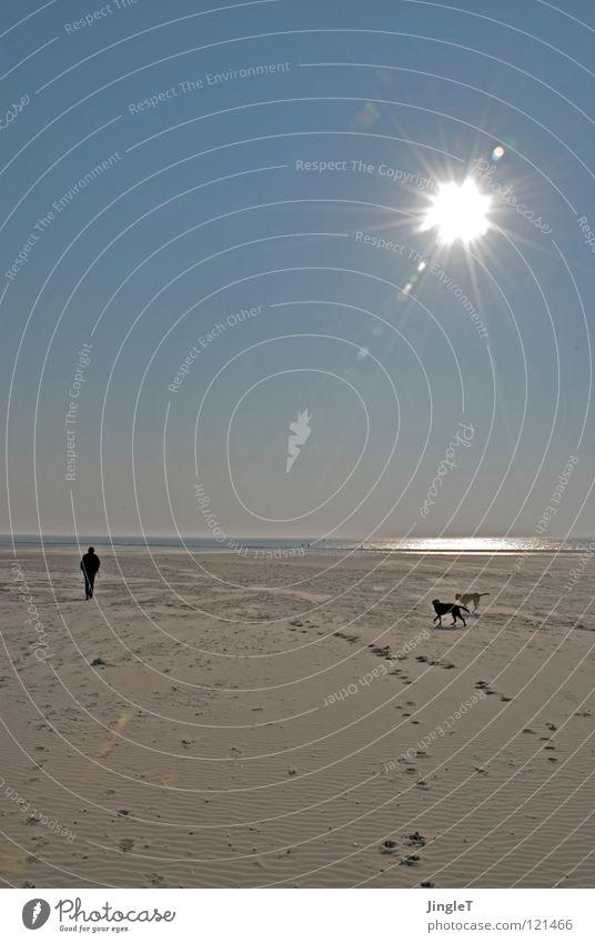 scheinriese Wasser Himmel Sonne Meer Freude Strand ruhig schwarz Wolken Einsamkeit gelb Ferne Erholung Spielen Hund See