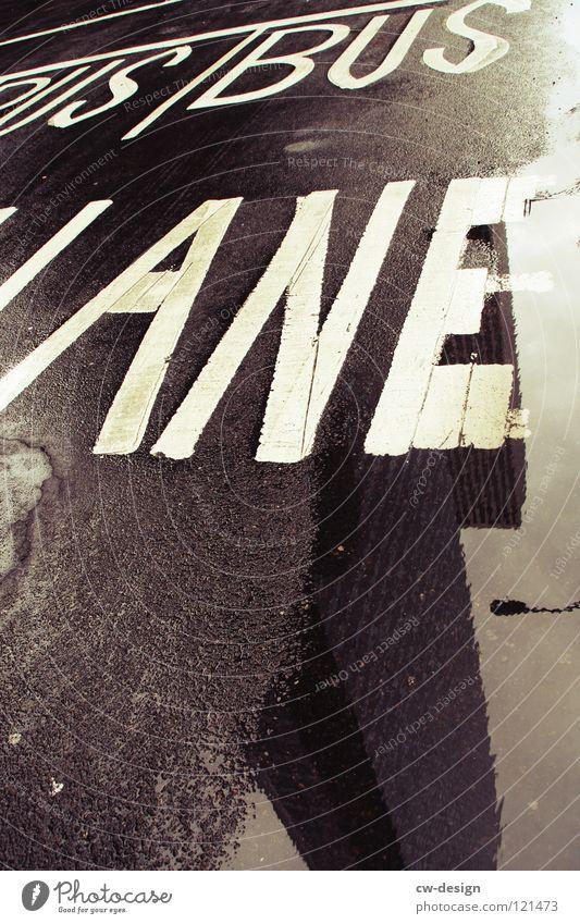 B U S · J A N E Reflexion & Spiegelung Hochhaus Pfütze nass feucht Regen Fahrbahn Fahrbahnmarkierung schwarz weiß grau Einsamkeit dunkel Design