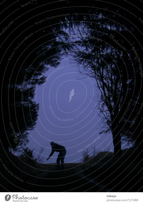Die Kerls Mensch Baum Gras Wald Hügel Tunnel Straße Wege & Pfade bedrohlich dunkel Angst gefährlich Schwäche Affen Körperhaltung Dieb Krimineller Deckung
