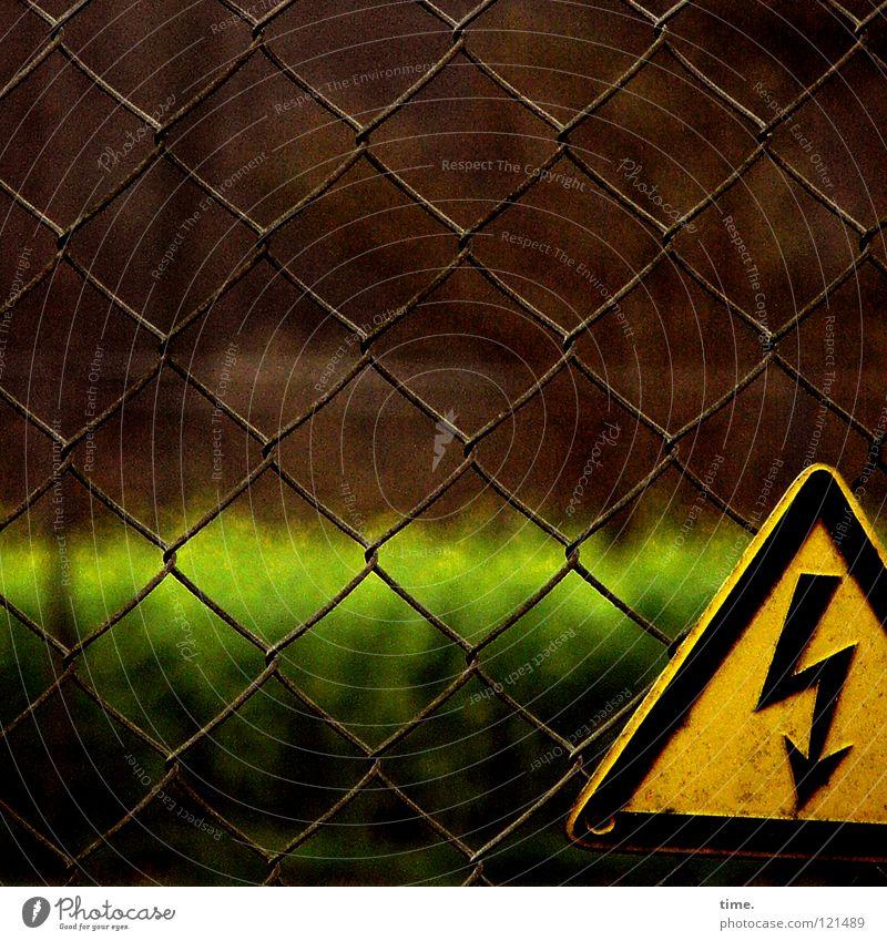Schwarz-gelbe Warnung vor grünem Horizont schwarz braun Elektrizität stoppen Pfeil Hinweisschild Zaun Kontrolle Respekt Warnhinweis Schraube Vorsicht Dreieck