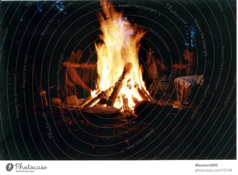 Feuer Wald Brand