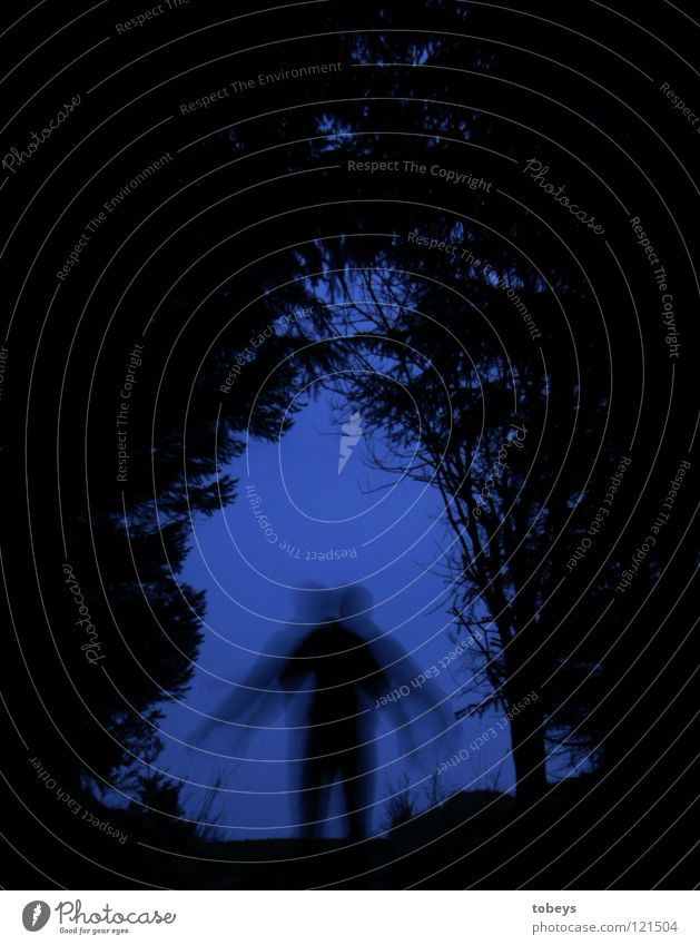 Mutant Mensch Baum Wald dunkel Straße Gras Wege & Pfade gefährlich bedrohlich Körperhaltung Hügel verstecken Zweig Tanne Tunnel Flucht