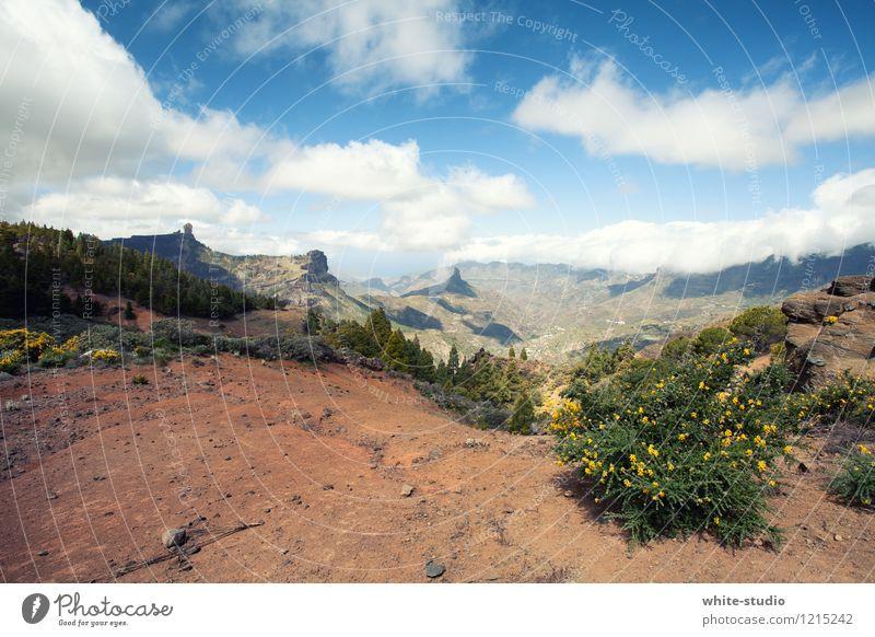 Die Wanderslust! Himmel Natur Pflanze Sommer Baum Landschaft Wolken Berge u. Gebirge Umwelt Sport gehen Felsen Sand Wetter Erde Sträucher